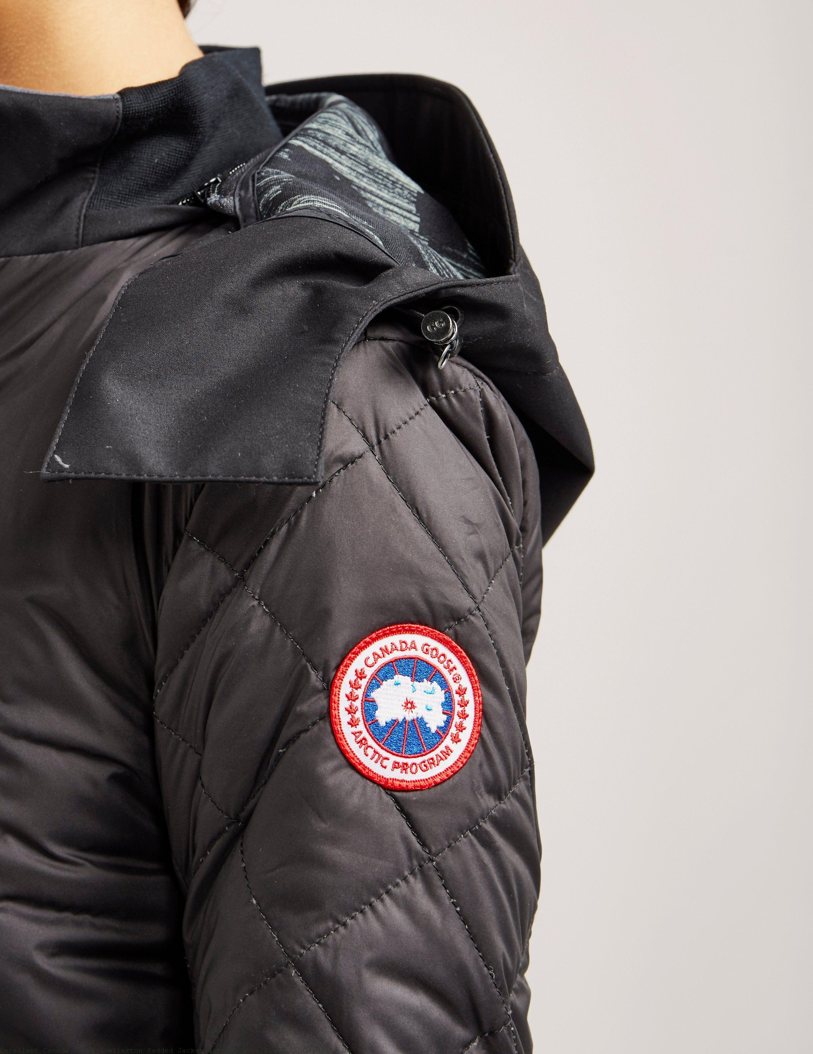 Excellent Canada Goose Stellarton Padded Jacket Canada Goose Black Friday Sale Uk